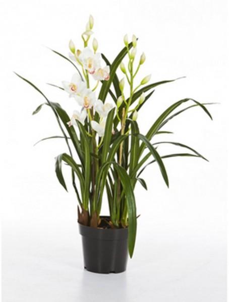 Cymbidium weiß 80 cm | Orchideen Kunstpflanze