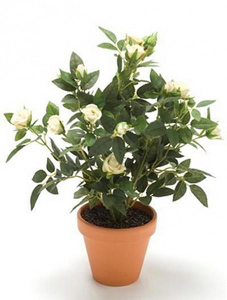 Rosenbusch weiß 11 cm | Kunstpflanze im Topf