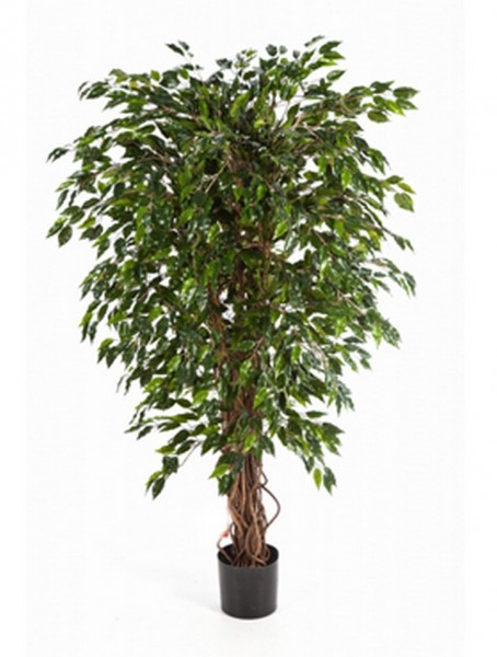 Ficus hawaiian liana | Kunstbaum