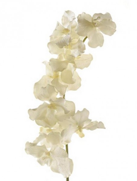 Vanda Zweig weiß 100 cm | Orchideen Kunstpflanze