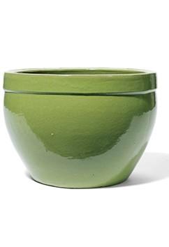 Kyros - Pistazie Keramikkübel