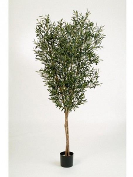 Natural Olivenbaum Kunstbaum