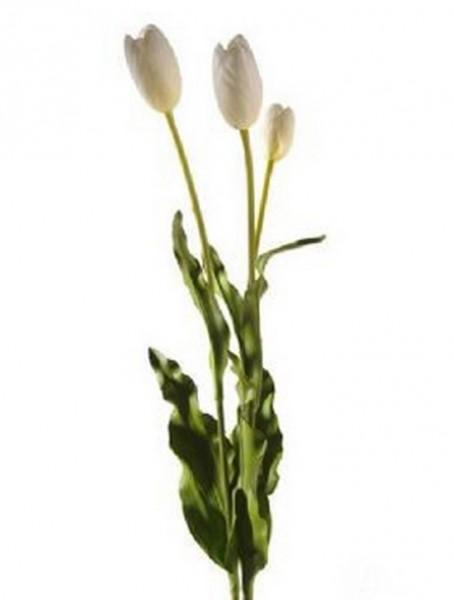 Tulpe weiß 75 cm | Kunstblumen