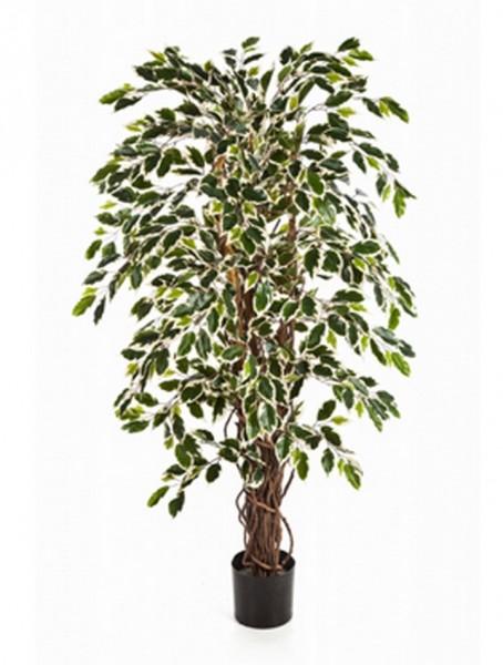 Ficus liane var | Kunstbaum