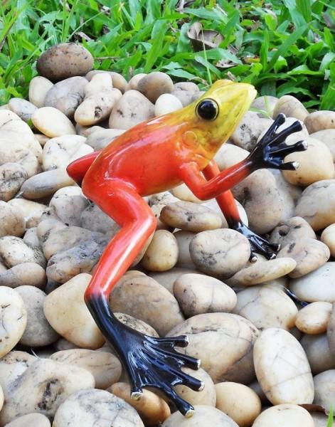 Regenwaldfrosch-rot-aus-Bronze