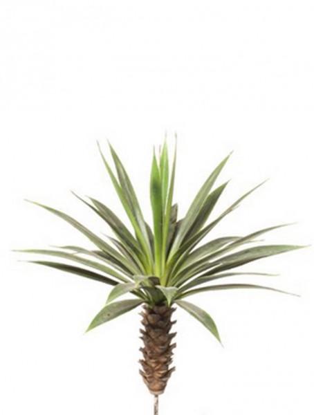 Agaven-Stamm 70 cm l Kunstpflanzenstrunk