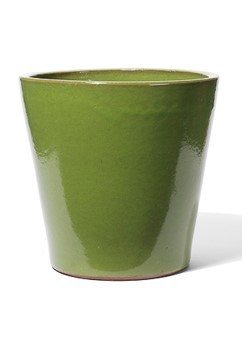 Vaso | Pistazie Keramikkübel