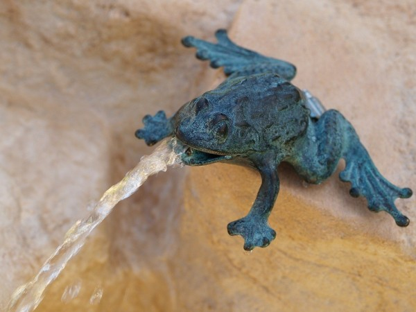 Frosch-Wasserspaier-Bronzefigur