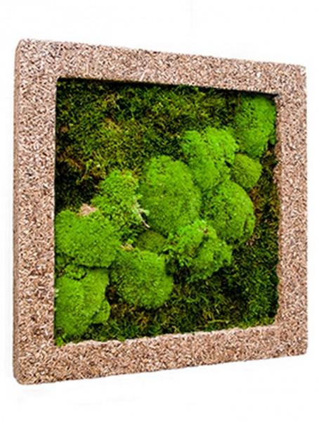 Rahmen aus Polystone naturecast mit mumifiziertem Moos