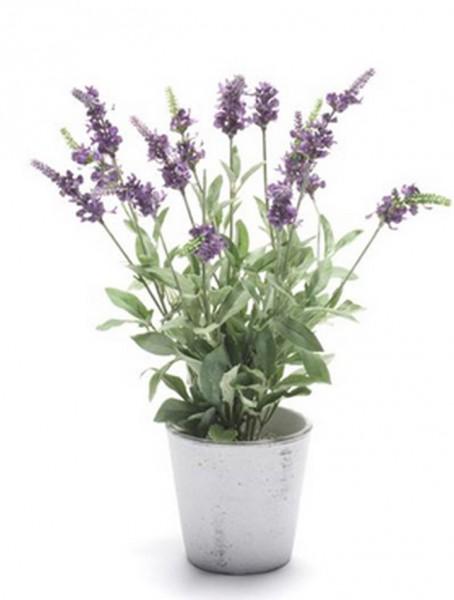 Lavendel Salvia | Kunstpflanze im weißen Topf