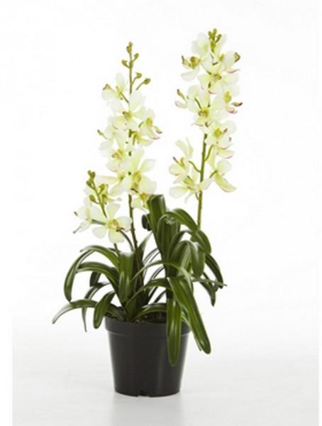 Vanda weiß 64 cm   Orchideen Kunstpflanze
