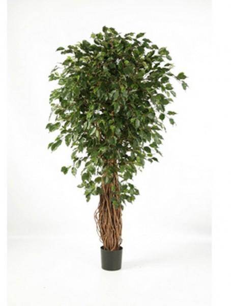 Ficus liane exotica | De Luxe Kunstbaum