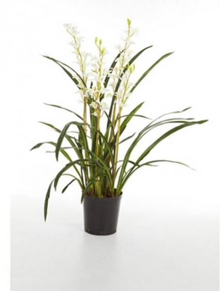 Cymbidium wild weiß 95 cm | Orchideen Kunstpflanze