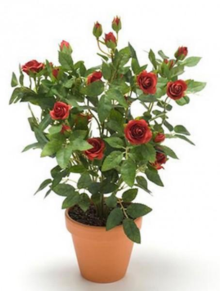 Rosenbusch rot 11 cm   Kunstpflanze im Topf